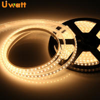 Outdoor LED Strip Light Waterproof 12V 24V/ UN-FPC-E2835x-xxD-12/24V