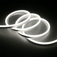 Outdoor LED Flexible Neon Strip Light for Building Decoration 24V